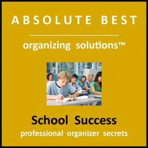 School Success product logo